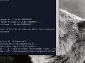 Xubuntu aggiornamenti presunto errore rete? colpa Google risolvere!