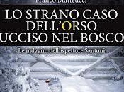 Anteprima: strano caso dell'orso ucciso bosco Franco Matteucci