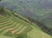 Rwanda, dimenticare