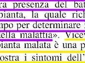 """Cosa significa """"infezione""""; """"malattia""""; """"prevenzione"""" """"contenimento"""" quando scrive Xylella fastidiosa subspecies Pauca ceppo CoDiRO"""