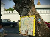 truffa famosa Bangkok: mappa sull'albero!
