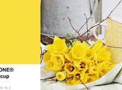 Tavolozza colori 2016: buttercup Pantone 12-0752