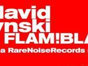 David Fiuczynski Flam! Blam! Pan-Asian Microjam!