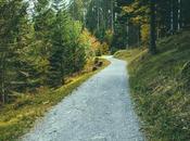 Passeggiare boschi allevia tristezza. Sentieri provare contro brutti pensieri
