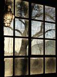 RvB-Arts_Vera-Rossi_ALBA_80x60-cm_stampa-diretta-su-plexiglass_light