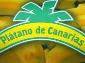 banana canaria, unica mondo