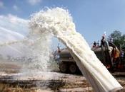 PARMALAT- Scarica latte genovese compra Cina
