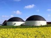 Energia biogas, Italia terza mondo