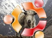 Strano criptico nome scelto Ubuntu 16.10: Yakkety Yak.