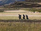 Land Grabbing: l'Etiopia ripensa?