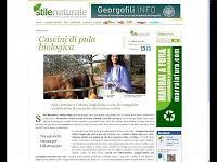 Ecoartigianato nel Chianti: Cuscini con Pula di Farro e Miglio Bio