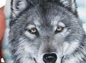 Primo piano lupo dipinto sasso