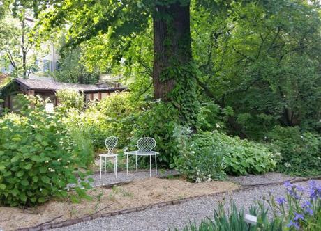 Milano cosa vedere l orto botanico di brera paperblog for Giardino botanico milano