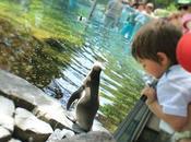 giusto portare bambini allo zoo? giorno Praga