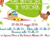 Montessori Fattoria Fermo