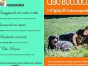 Cibo bucolico all'8 Agosto 2016 sulle montagne dell'Alto Adige.