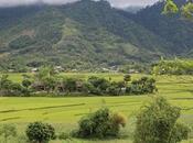 migliori destinazioni ammirare terrazze riso