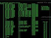 Matrix Anthology Eulero