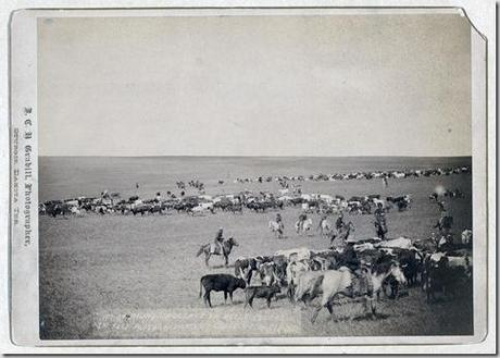 Title: Round-up scenes on Belle Fouche [sic] in 1887 Cowboys and cattle on range. Repository: Library of Congress Prints and Photographs Division Washington, D.C. 20540