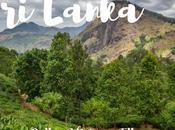 Lanka: itinerario Galle, Mirissa Ella