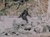 """L'uomo """"inventato"""" Bigfoot"""
