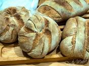 Forme pane, antico sapore genuino