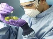 classica questione bioetica: punto sulle staminali embrionali Italia