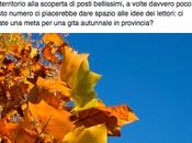 Gite autunnali provincia Varese: idee amanti della natura