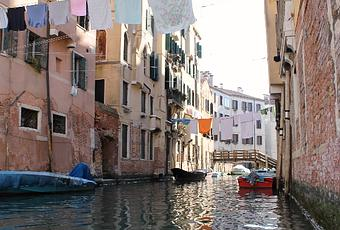 biennale di venezia guida alla mostra internazionale di