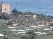 "Marine Park Village area archeologica, ""svista"" ministro"