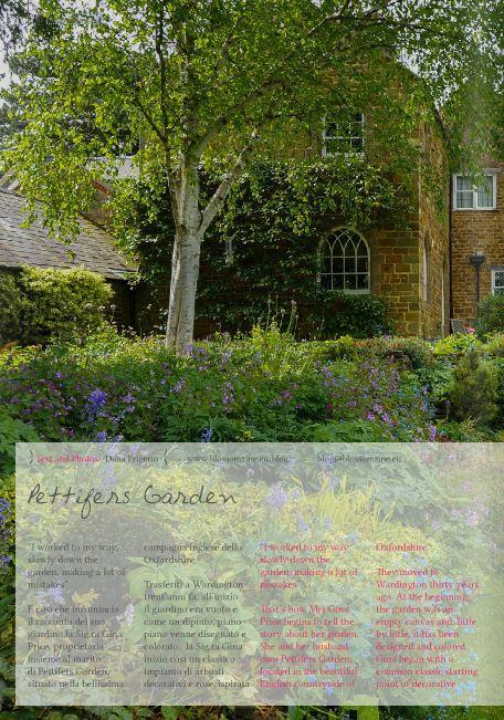 Idee per decorare il giardino finestra della cucina - Idee per decorare il giardino ...