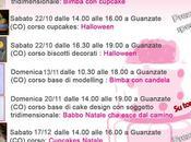 Corsi cake design: calendario corsi sugar ottobre/dicembre 2016