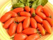 Pomodoro torpedino Fondi: caratteristiche ricette