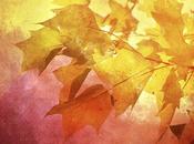 Autunno Autumn