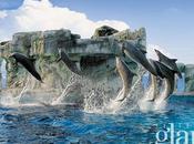 Alla scoperta mondo sottomarino riviera