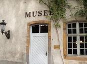 Papier peint. delizioso museo francese…