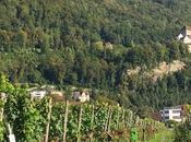 Scoprendo Liechtenstein. Tesori, vigneti pietre lunari…