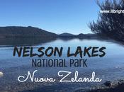 Nelson Lakes National Park: natura Nuova Zelanda