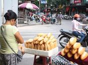 DELLE INDIE/ Hanoi, baguette tartaruga imbalsamata