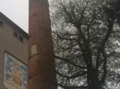 Pedavena: Fabbrica della Birra