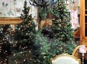 stagione cuore, l'arrivo Natale