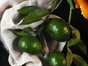 Mandarino proprietà #seguilestagioni
