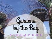 Gardens Bay, parco magico Singapore