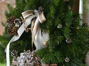 🎄corso floreale workshop ……………Aspettando Natale