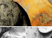 PhotoRe(F)use: mostra riflettere Ecosostenibilità Ambiente
