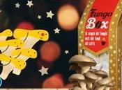 Perché regalare Fungo Natale essere un'ottima idea