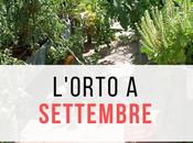 L'orto settembre