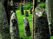 Bori Kalimbuang, posto unico, pietre megalitiche Tana Toraja