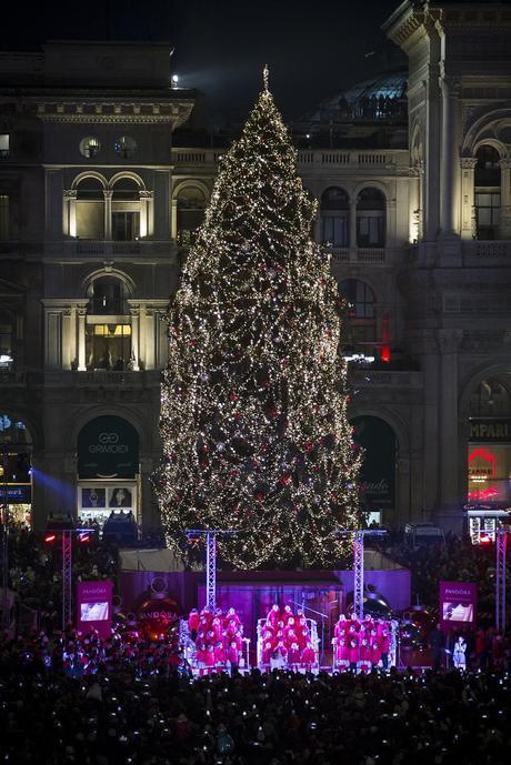 Perché l'albero di natale di Roma fa pietà e quello di Milano è bellissimo?