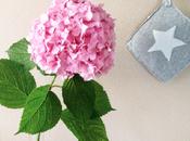 Centrotavola floreale...Un'idea sola ortensia